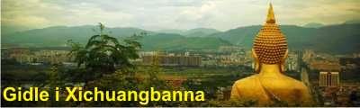 Gidle i Xichuangbanna