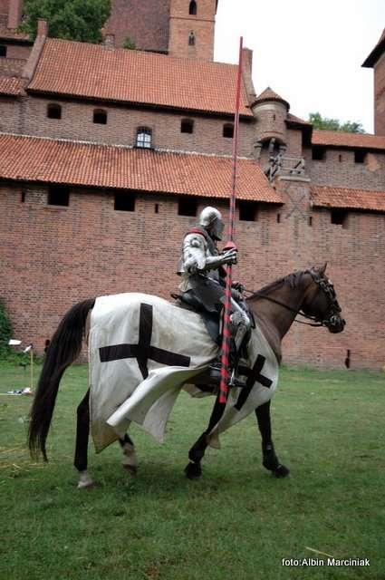 Przeglądasz zdjęcia z artykułu: Oblężenie Malborka